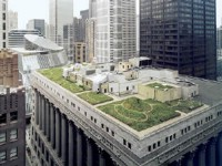 chicago-rooftop-garden.jpg
