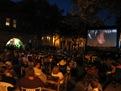 Big screen Pottermania night