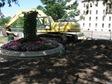Flower garden on Bridge Square