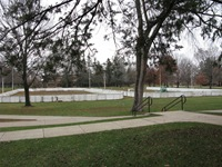 Carleton hockey rinks