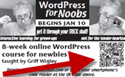 WordPress for Noobs ad in NEG