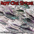 School of Salmon by Not One Stone