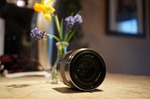 Sony SEL50F18 Lens - 50 mm - F/1.8 - Sony E-mount
