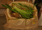 food compost basket