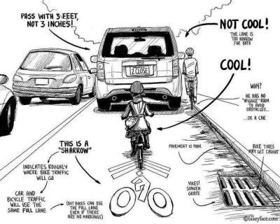 sharrows cartoon from bikeyface.com