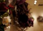 NAG's Festival of Wreaths