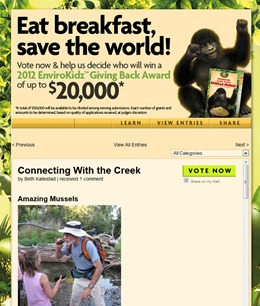 Vote for Connecting with the Creek project on Facebook