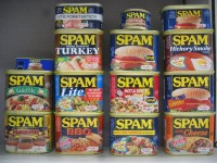 spam-collection-2005-04.jpg