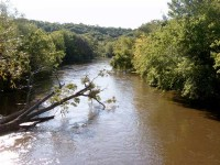 cannon-river2.jpg