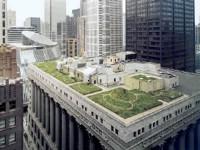 chicago-rooftop-garden.jpg