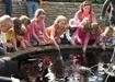 Como Zoo and Conservatory's Sunken Garden