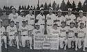 1982 Dundas Dukes photo on Town Ball wall at Target Field