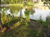 shoreline, Ames Park