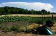 Thunderhead over the Carlson SEEDS field