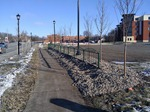 Streetscape improvements at Northfield Crossing