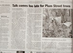 Print version of the story: Talk comes too late for trees