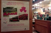 Caribou Coffee - Breast Cancer Awareness poster