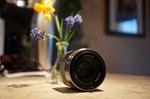 Sony SEL50F18 Lens - 50 mm - F/1.8 - Sony E-mount