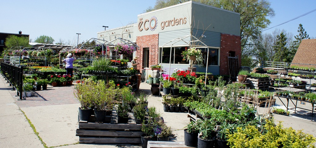 Howie And Jeni S Downtown Gem Eco Gardens Locally Grown Logro
