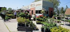 Eco Gardens, Northfield, MN