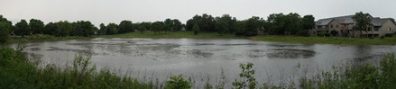 A full storm water pond in Hidden Valley Park, June 2012