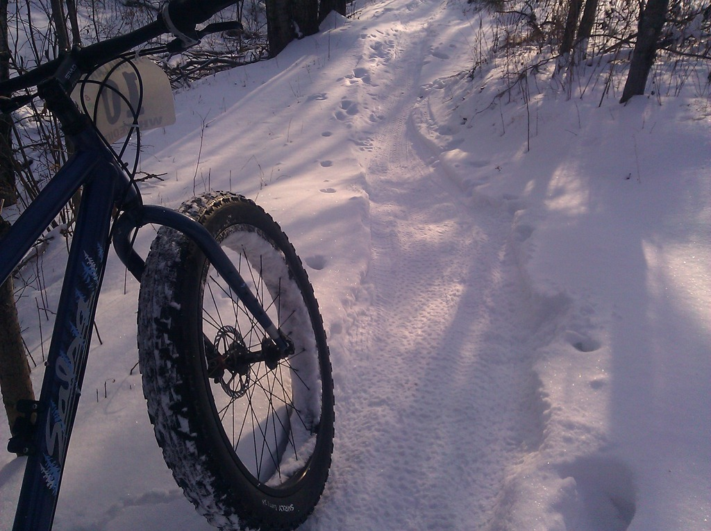 fat bike on a packed trail  excellent regular mountain ... dab63f854