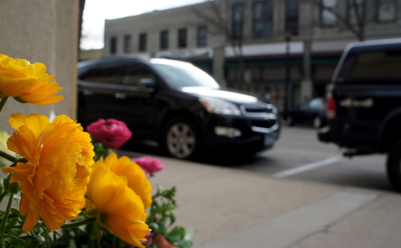 Flower pots are sprouting on Division St., Part 2