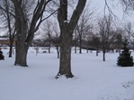 Ames Park