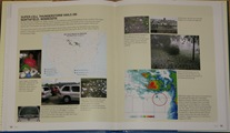Northfield hailstorm from book, Extreme Weather